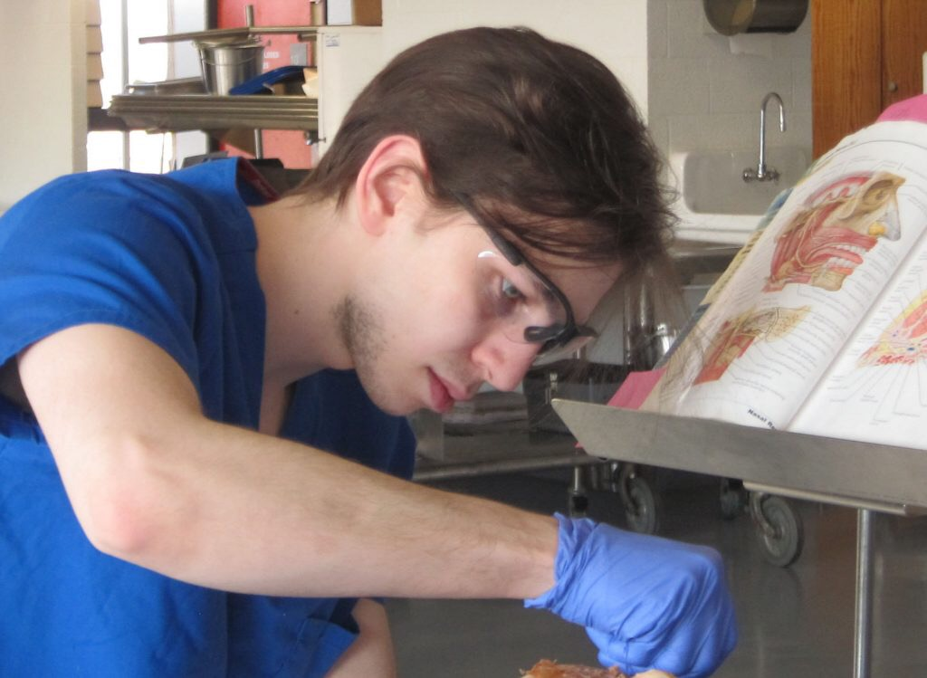 Student dissecting tissue