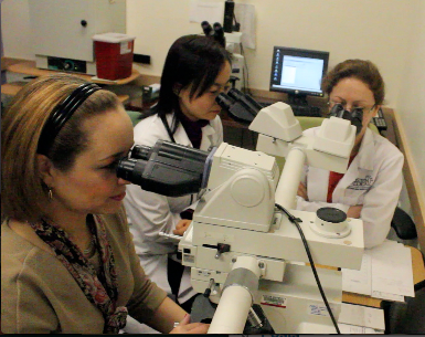 Pathology & Laboratory Medicine BU Residency Training