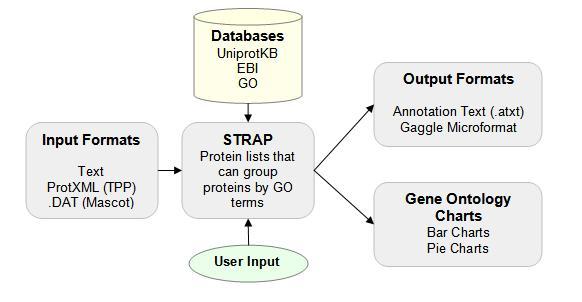STRAP for GO Annotation | Cardiovascular Proteomics Center