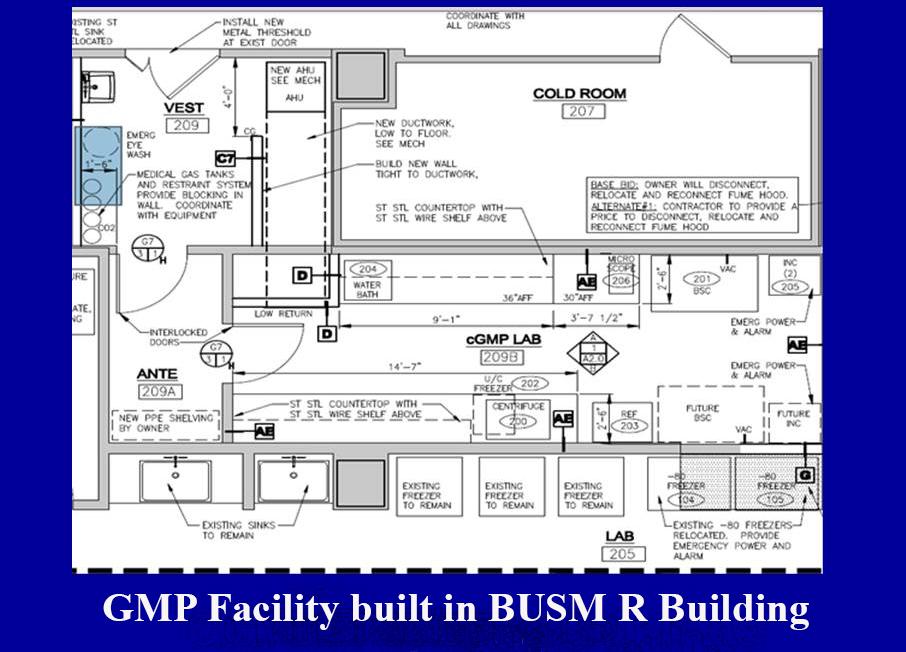 melanoma diagram good manufacturing practice facility gmp dermatology