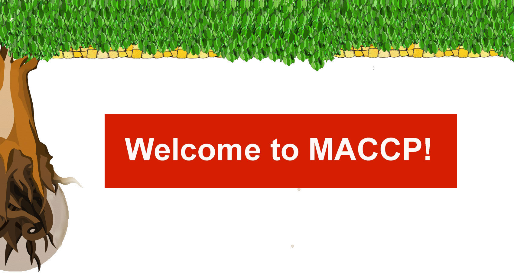 Welcome to MACCP!