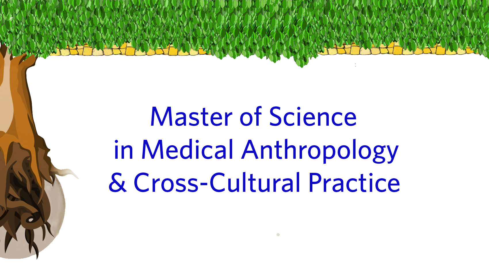 Master of Science in Medical Anthropology & Cross-Cultural Practice