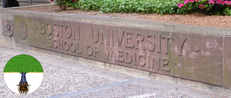 Boston University School of Medicine concrete sign
