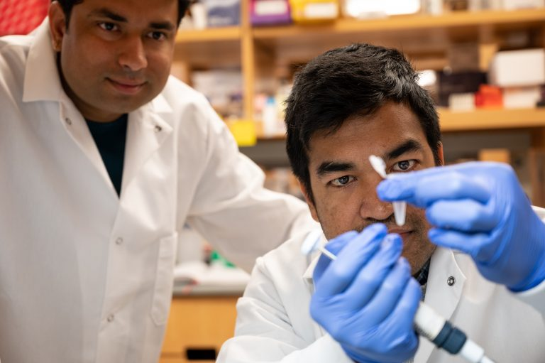 Two researchers examining specimen
