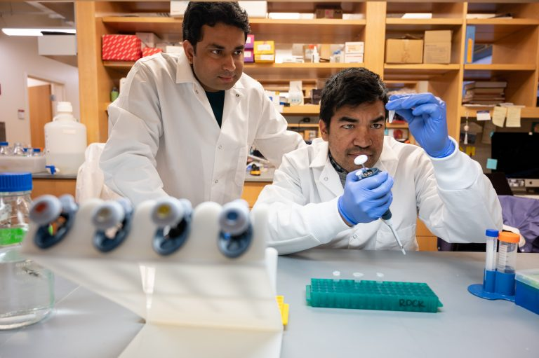 Two doctors in lab examining specimen