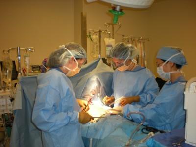 Surgery Residency Program » Surgery | Boston University